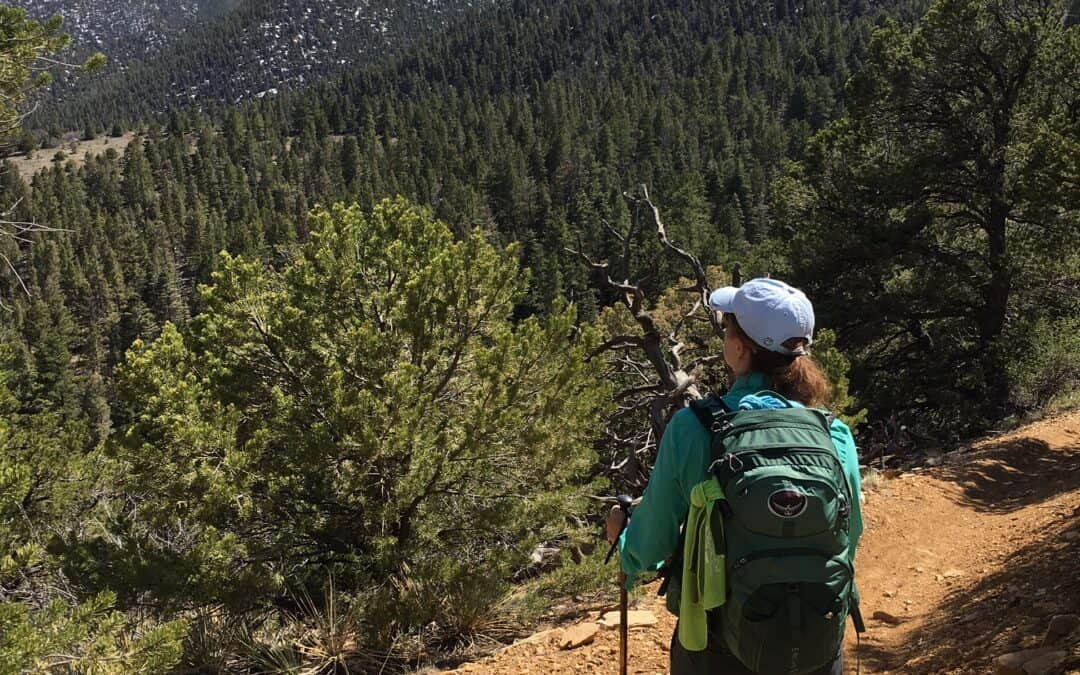 5 Focus Areas for a Post-injury Hiking Trip